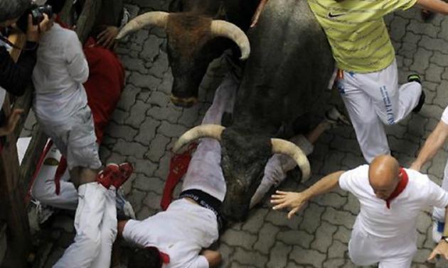 bull-hospital
