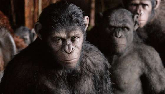 """""""Dawn of The Planet of The Apes"""": 5 Ways Caesar Taught Us To Be Better Human Beings"""