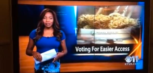 alaska marijuana news anchor